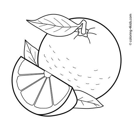 Orange Coloring Pages Orange Tree Coloring Page Coloring Home