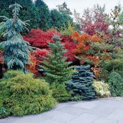 the best new shade perennials for 2014 twists - Evergreen Landscaping