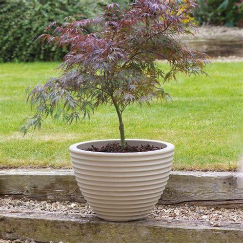 Where To Buy Outdoor Planters Low Honey Pot Planter Stewart Garden