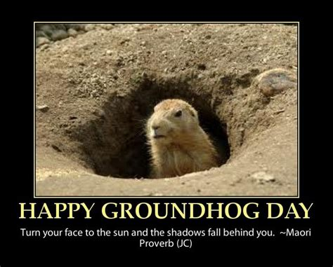 groundhog day saying groundhog jokes and quotes quotesgram