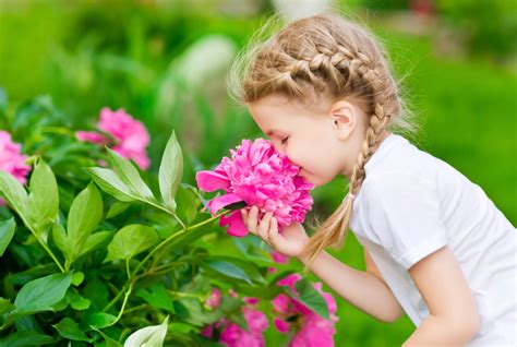 why do flowers smell flowers that smell good petal talk
