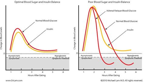 Cortisol Detoxing by The Link Between Adrenal Fatigue And Hypoglycemia