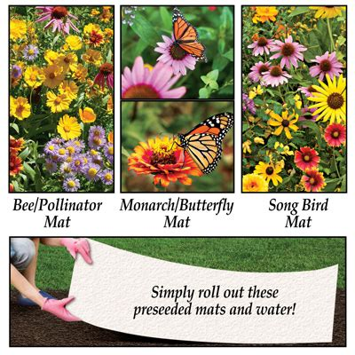 Pre Seeded Flower Mats by Pre Seeded Flower Mix Mat From Collections Etc