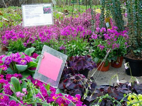 staudenmarkt botanischer garten staudenmarkt im botanischen garten landlebenslust