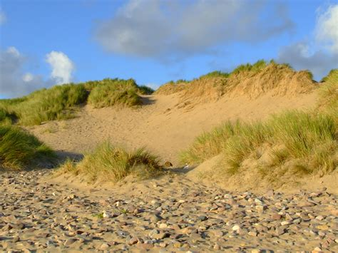sand dune sand dunes free early years primary teaching resources