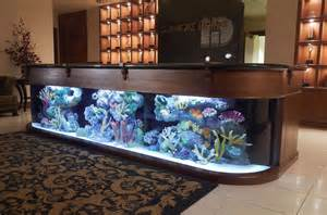 Aquarium Bar Aquarium Company That Designs Service Supplies Aquariums