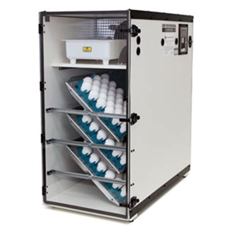 Cabinet Incubator Kit by Cabinet Incubator Parts Cabinet Incubator Accessories