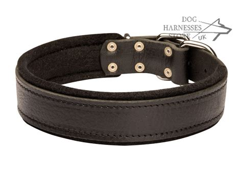 soft collars padded leather collar for doberman strong and soft