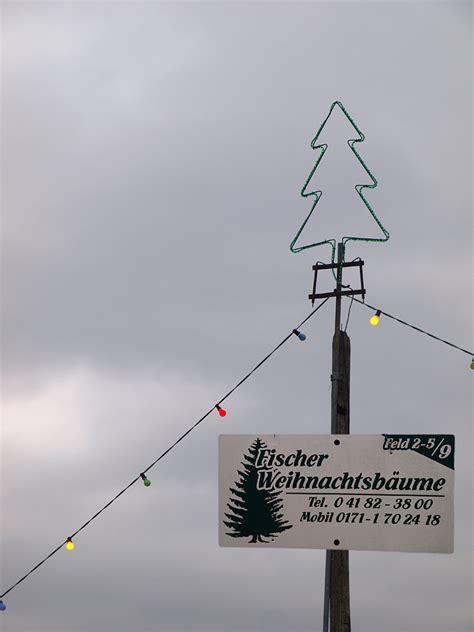 weihnachtsbaum selber schlagen hamburg 28 images
