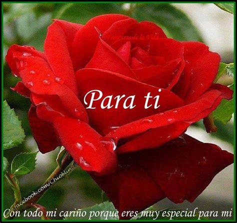 imagenes feliz domingo para ti feliz domingo para ti esta rosa con amor cary gran