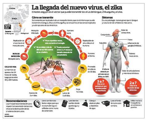 imagenes memes del zika lo que debemos saber del virus zika infograf 237 as todo