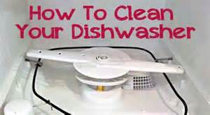 How To Keep Your Dishwasher Clean 301 Moved Permanently