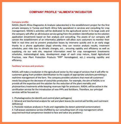 company profile template pdf 6 company profile sle pdf company letterhead