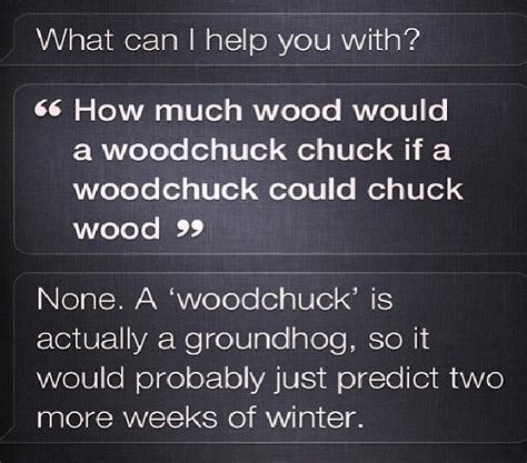 groundhog day jokes riddles conversations with siri