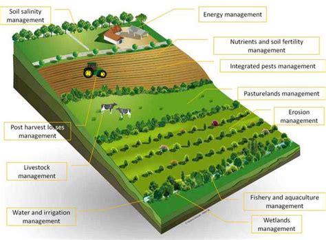 farm layout definition sustainable agriculture organic farming biofertilizers