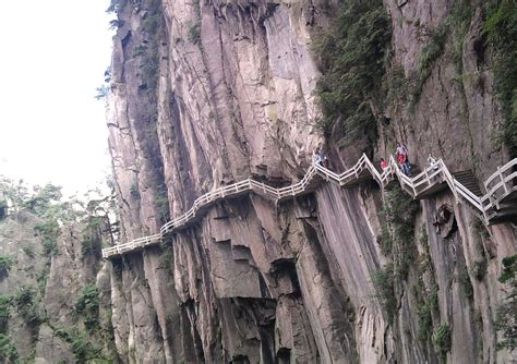 Japan Flower Tunnel by Huangshan Mountain