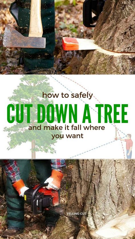 8 Ways To Cut Back On Caffeine by Cut A Tree Safely