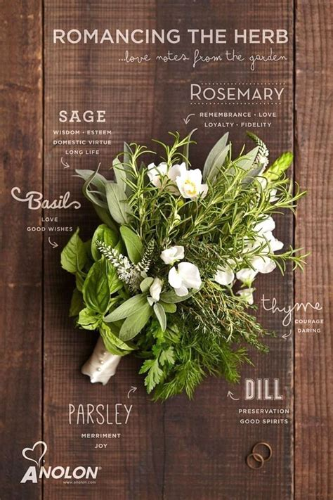 Wedding Bouquet Herbs by Herb Wedding Bouquets Ideas Weddingtopia