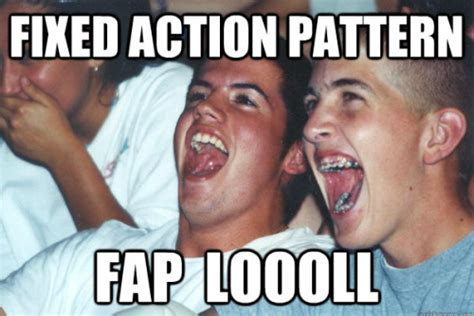 fixed action pattern definition biology ƒ uck y 2 71ah n mc 2 rdy jokeσ