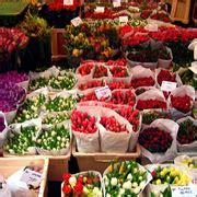 fiori primaverili elenco fiori primaverili elenco fiori per cerimonie fiori di