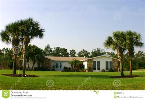 american home with palm trees and blue doors stock