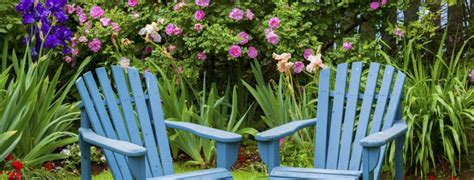 How To Paint An Adirondack Chair by Buy Adirondack Chairs
