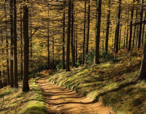 Landscape Pictures Uk Best Uk Landscapes Peak District Of Uk Landscape