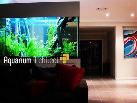 aquarium design sydney custom planted aquarium aquarium architect custom fish