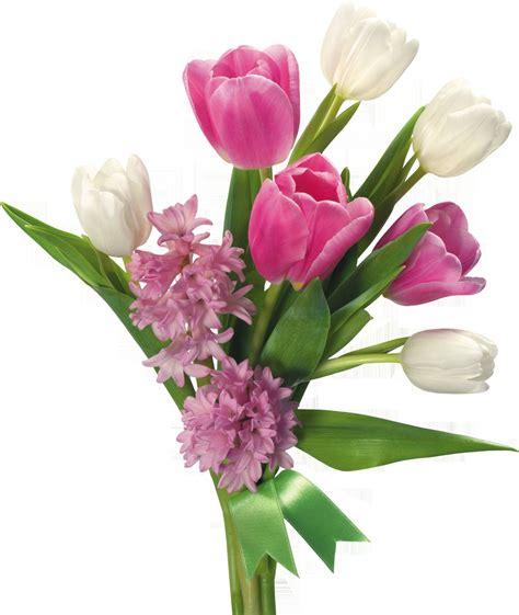 fiori in vaso fiori in vaso fiori per cerimonie fiori in vaso quali