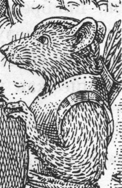 Doomeye - Redwall Wiki - Brian Jacques, Castaways of the