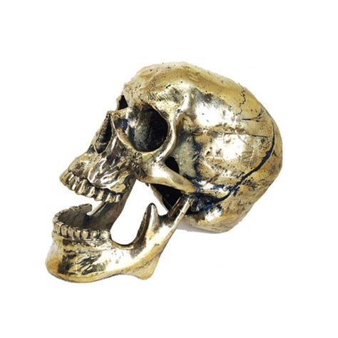 Skull Desk Accessories Jac Zagoory Executive Accessories Touch Of Modern