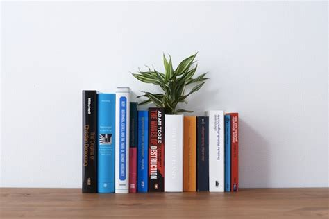 What Is The On The Shelf Book About by A Playful Vase Disguised As A Book On The Shelf