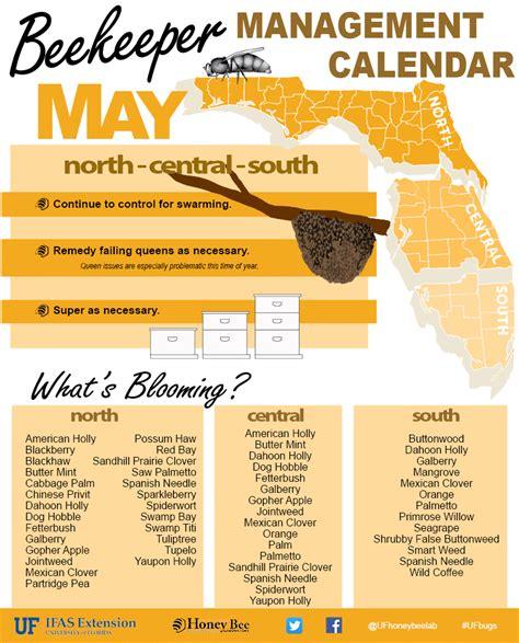 calendar uf calendar