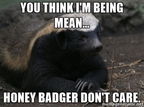 Meme Honey Badger - you think i m being mean honey badger don t care