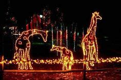 riverbank zoo lights 142 best columbia sc images colombia columbia columbia