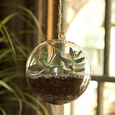 Glass Hanging Planters by Glass Hanging Orb Indoor Pots And
