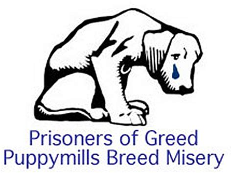 signs of a puppy mill presentation name on emaze