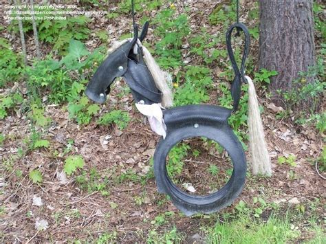 tire horse swing pattern beginner gardening pony tire swing pattern 1 by mygypsyrose
