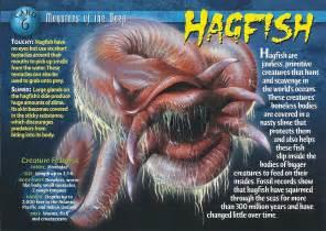 hagfish wierd wild creatures wiki