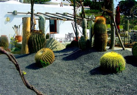 giardino ischia ischia it giardini ravino
