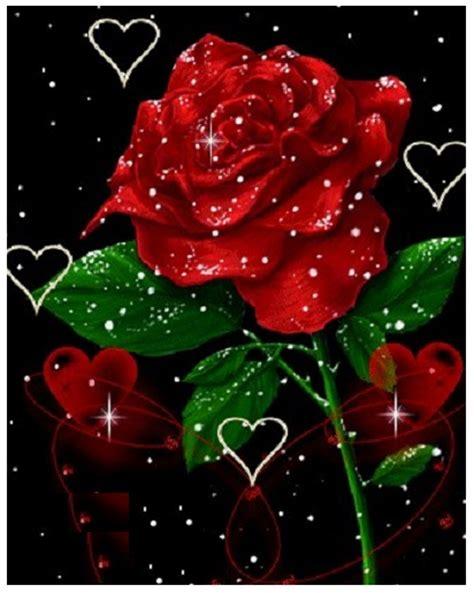 imagenes rosas animadas ramos de rosas rojas con frases para enamorar imagen de