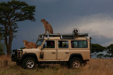 land rover defender safari 1000 images about land rover n friends on pinterest