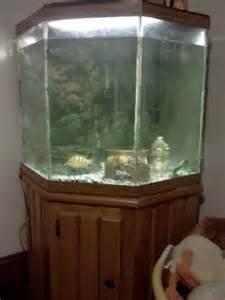 corner fish tanks;fish tank ; hd large aquarium corner unit 55 gal