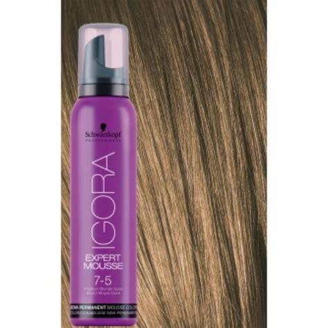 mousse hair color 20 semi permanent hair colour mousse alwaysdc
