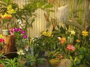 Honolulu Botanical Gardens File Foster Botanical Garden Orchid Display Honolulu
