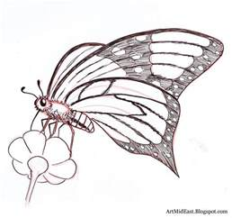 How To Draw Butterfly How To Draw A Butterfly Step By Step Drawing Lessons