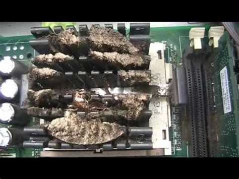 bed bugs in electronics cleaning of a roach infested computer part 1 youtube