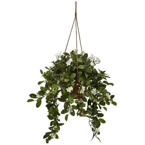 hanging plant romano 2 ft hedyotis topiary trees 2 pack 50 10008 r