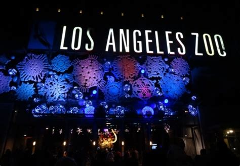 L A Zoo Lights Holiday Light Display Runs From 11 18 16 How Much Are Zoo Lights Tickets