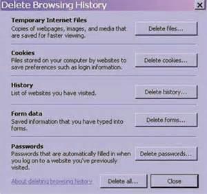 Internet explorer7 delete browsing history jpg